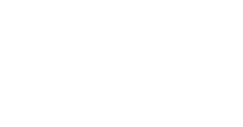 The Cricket School